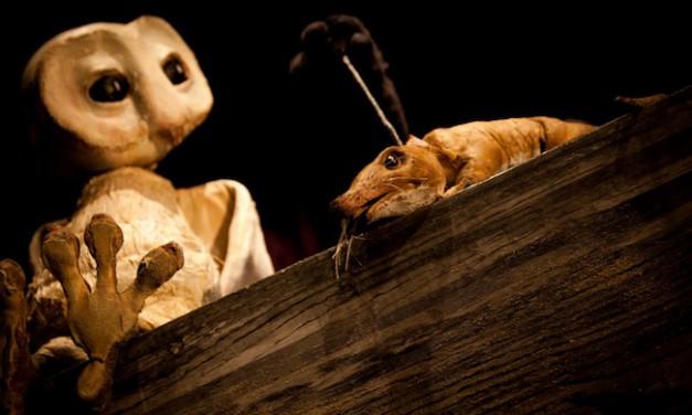 Marionnettes pour enfants: les chouettes de la compagnie Alula
