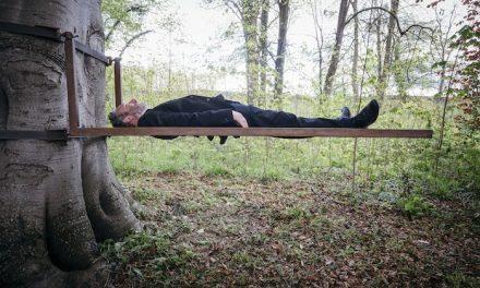 Exposition: faire la sieste à l'abbaye de Jumièges