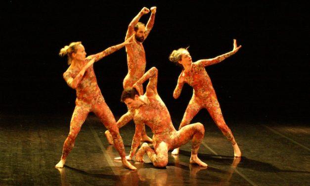 Danse à DSN: une partition(s) rondement menée