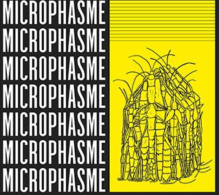 Microphasme : Micro édition, macro création