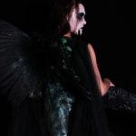 Sylvain Wavrant donne la parole aux oiseaux