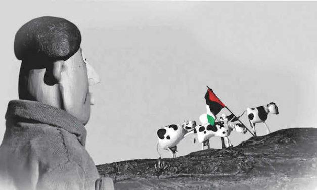 Festival à Rouen : Des regards sur la Palestine