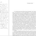 4 450 lettres de Flaubert en ligne