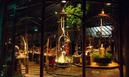 Théâtre au Volcan : un festival des saveurs