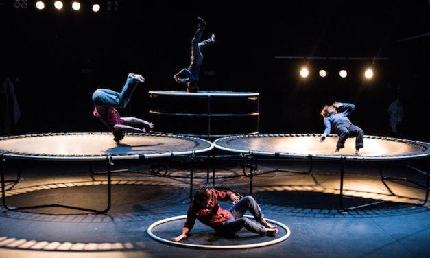 Cirque à Elbeuf : dans un cercle fini et infini