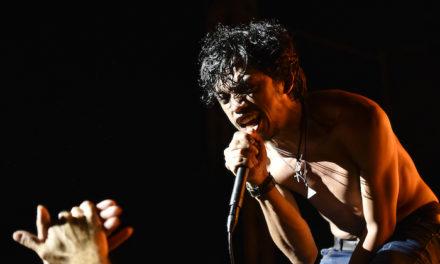 The Dizzy Brains : « La musique est un outil de survie »