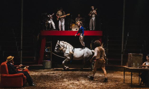 Une vie de cirque