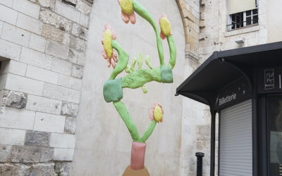 La plante magique de Bevis Martin et Charlie Youle